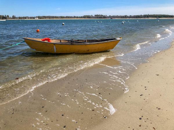 Michael finally rowed his boat ashore...