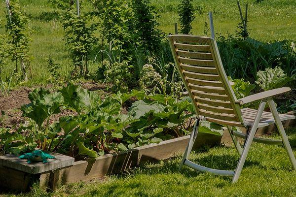 My Yard...