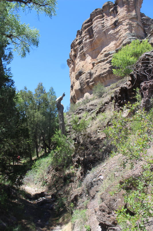 Trail to Gila Cliff Dwellings...