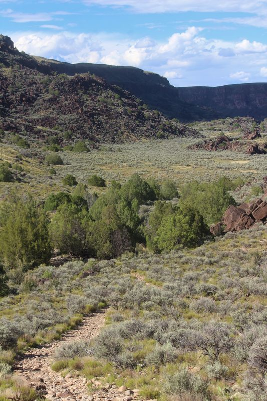 Vista Verde Trail along the Rio Grande Gorge...