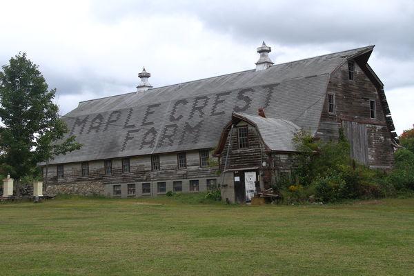 Old dairy barn...