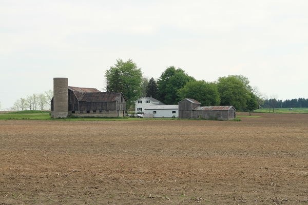 This is the farm just after it was sold...