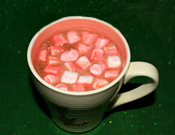 A nice Hot cup of Cocoa with Peppermint Marshmallo...
