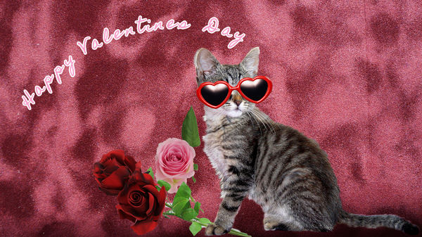 Happy Valentines Day to all My Friends on UHH...