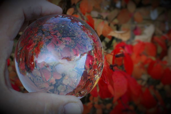 Red leaves with crystal sphere...