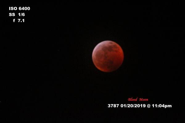 Best Blood Moon gotten yet. Taken with Canon Rebel...