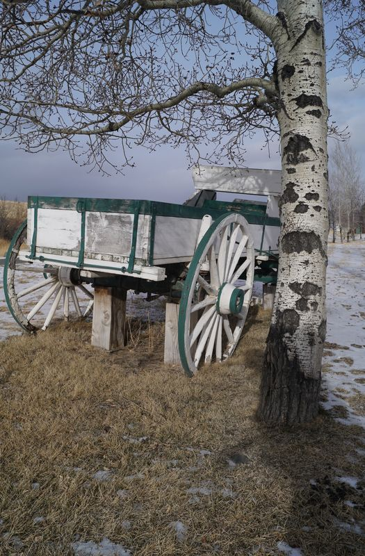 Found one of their wagons up on blocks....