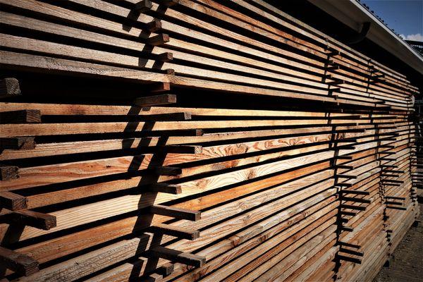 (5)  Holland woodpile....