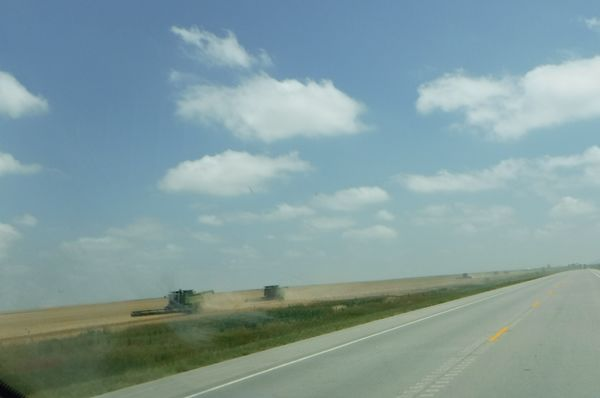 On our wAy home we pAst Amber fields of grAin bein...
