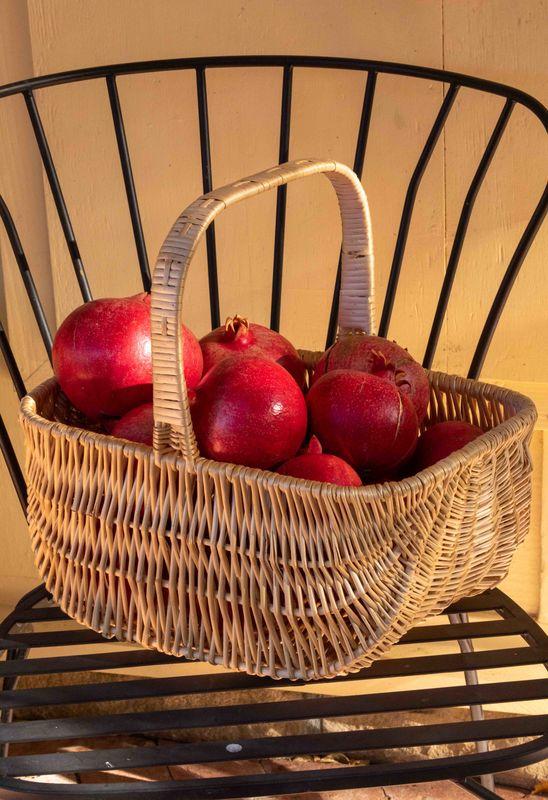 Quaker Basket...