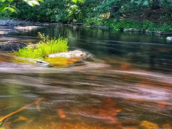 A simple roadside stream...